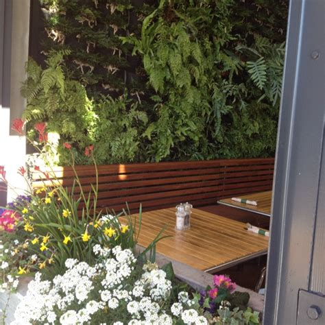 Vertical Garden Restaurant Innovative Indoor Vertical Wall Garden Concept Vertical