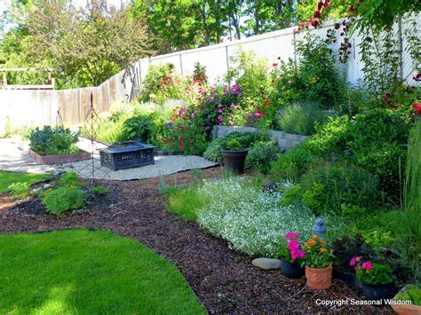 backyard plants and flowers creating a cottage garden