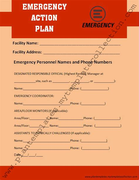 emergency plan template emergency care plan sle documents
