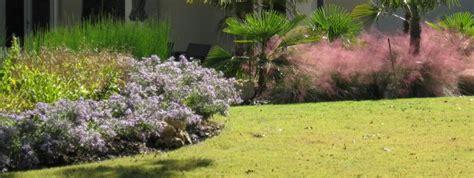 Cardos Farm Project Teleflora S Rose Tribute In Denton Tx Flower Garden Denton Tx