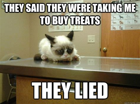 Vet Memes - they said they were taking me to buy treats they lied