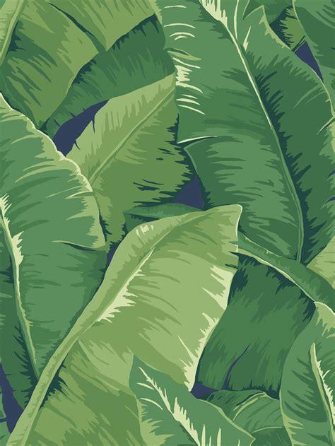 tropical leaf wallpaper gallery