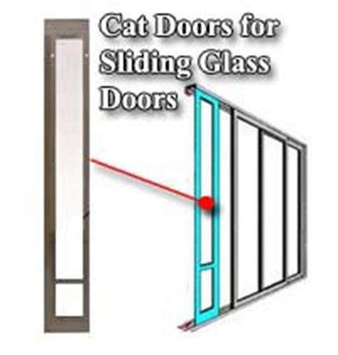 cat doors for walls and doors magnetic rfid raccoon