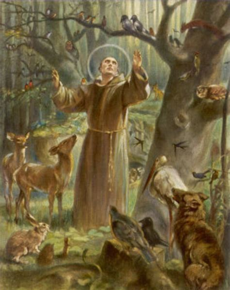 st for francis of assisi the patron of environment