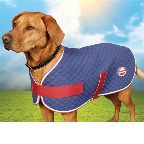 comfort jackets for dogs weatherbeeta soft cotton quilt comfort dog coat navy red