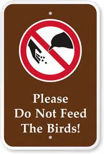 please do not feed the birds cground sign ships free