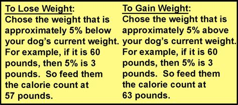 how to make a puppy gain weight how to gain weight for dogs howsto co