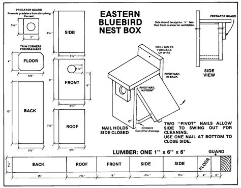 Eastern Bluebird House Plans Free Newcomb Vic Offers Family Bluebird Nest Box Workshop