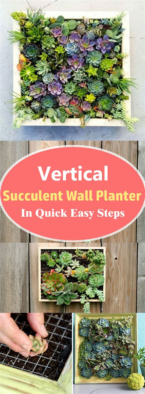 How To Make A Vertical Succulent Planter by Vertical Succulent Wall Planter In Easy Steps Diy