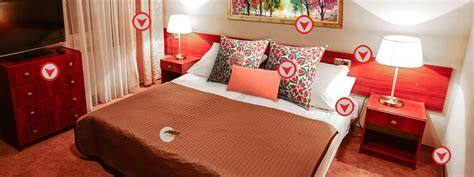 bed bugs in hotel room bed bugs treatment bed bugs control bed bug proactive