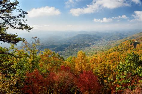smoky mountains fall colors top 5 gatlinburg webcams in the smoky mountains