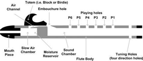 the piccolo is in what section of an orchestra woodsounds native american flute cross sectional diagram