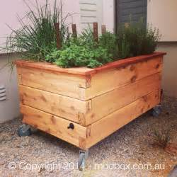 wicking garden beds modbox