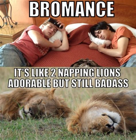 Bromance Memes - bromance meme memes