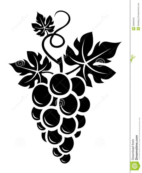black silhouette of grapes vector stock images image
