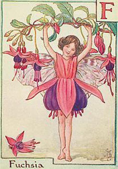 Flower Fairies Of The Garden Halcyon Days Just For Flower Fairies And Gardens