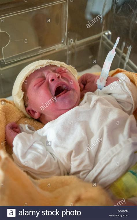 baby cries when put in crib 88 baby cries in crib royalty free stock photo