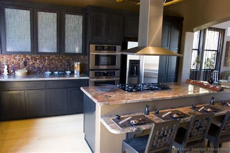 Black Cabinet Kitchen Designs Pictures Of Kitchens Traditional Black Kitchen Cabinets