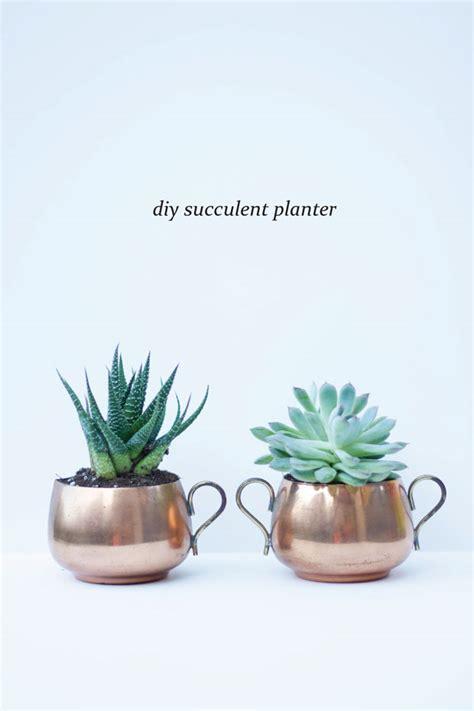 succulent planter diy how to succulent planters bluebirdkisses