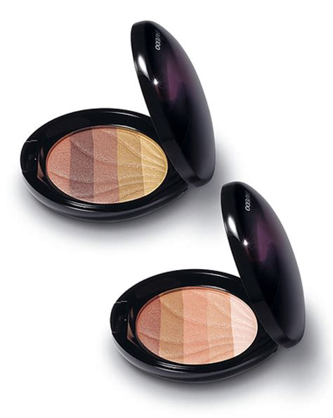 Tas Shiseido los terracotas de shiseido y chanel bellezapura