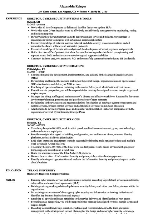 Cyber Security Resume by Director Cyber Security Resume Sles Velvet