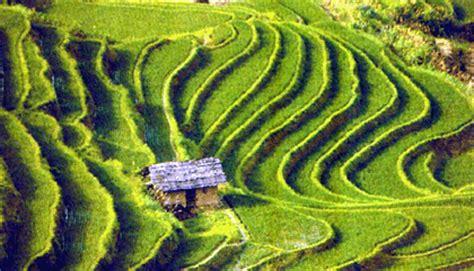 coltivazione a terrazza impero azteco e la sua conquista publish with glogster