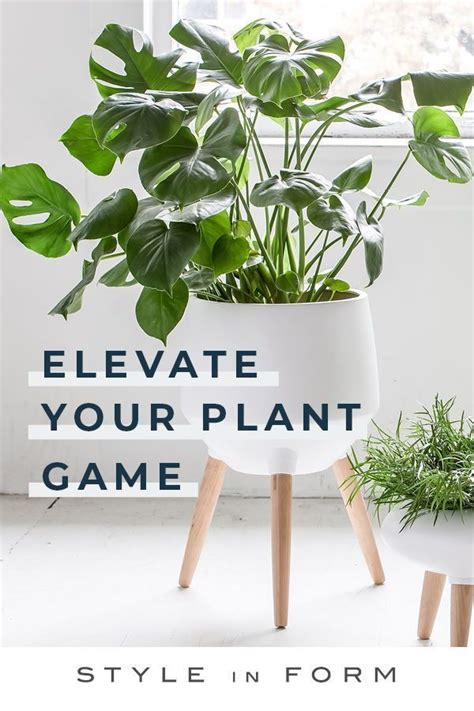 give  plants  mid century inspired makeover