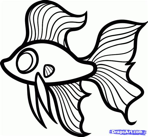 betta fish coloring page siamese fighting fish coloring
