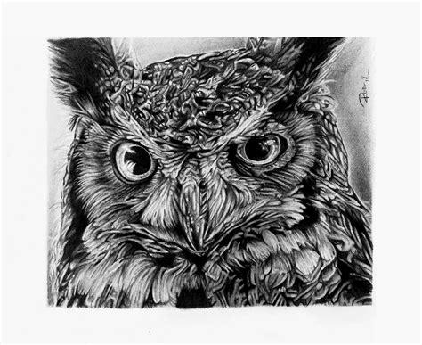 dibujos realistas buho buho por reniervivas dibujando