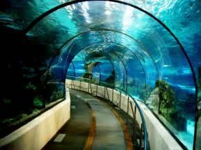 l aquarium l aqu 224 rium de barcelona tips en informatie barcelona