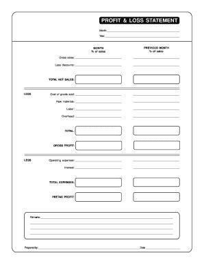 blank profit and loss statement pdf fill online