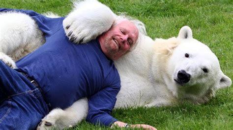 meet   man   world   swim   polar bear
