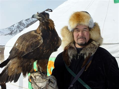 traditional hunt  tame hawks  falcons kazakhstan