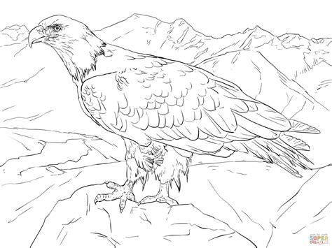 coloring pages alaska animals 301 moved permanently