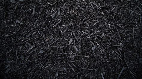 black colored designer mulch atlantic mulch