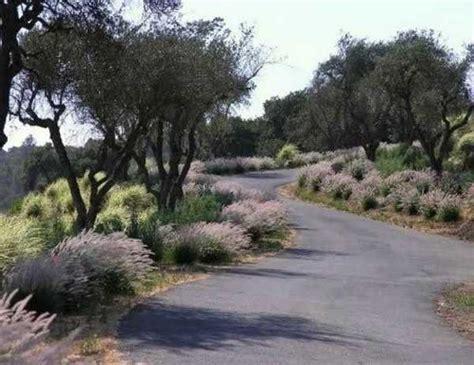 Landscape Ideas Driveway Charming Country Home Driveways Driveway