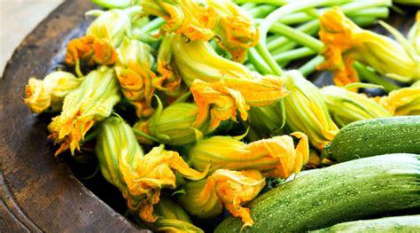 pastella x fiori di zucca fritti fiori di zucca fritti idee per pastella e ripieno le
