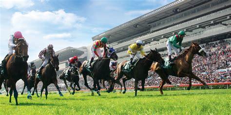 hong kong horse racing experience hong kong
