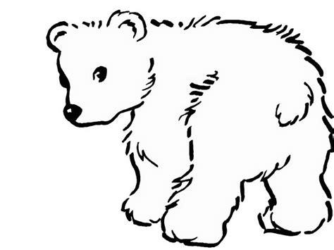 polar bears color az coloring pages