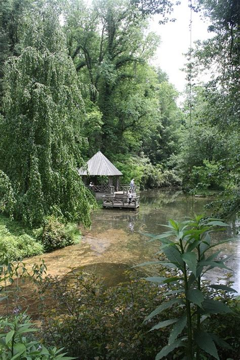 backyard bass pond 21 best images about biltmore estate the bass pond on pinterest mansions the