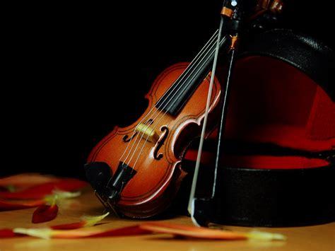 wallpaper iphone 5 violin iphone violin wallpaper wallpapersafari