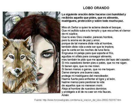 imagenes animal espiritual despertando conciencias el lobo como animal de poder