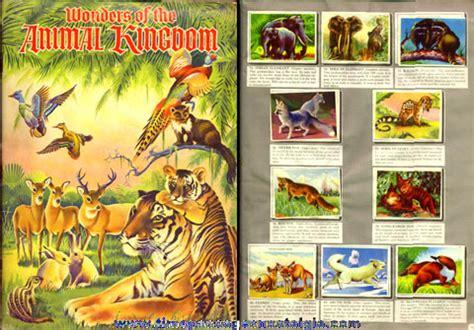 Animal Kingdom Sticker Book