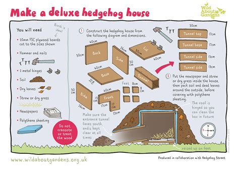 design and make the last hedgehog in avon avon wildlife trust