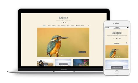 eclipse theme nulled here s why using pirated and nulled wordpress themes is a