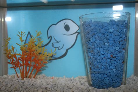 Diy Aquarium Decorations by Aquarium Decoration Ideas Diy Fish Bowls That Fish