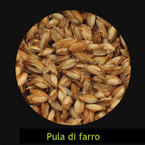 cuscini farro cuscino con di farro taolettinimassaggio it