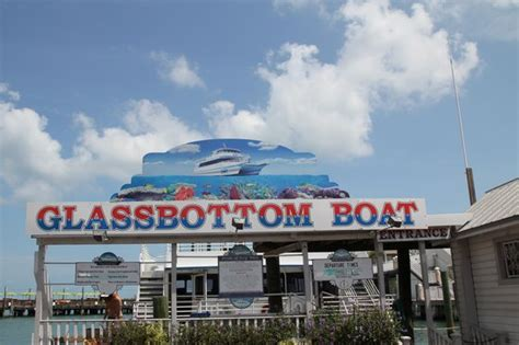 glass bottom boat tours in key west glass bottom boat discovery tour key west fl on