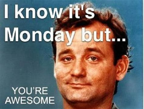 Awesome Memes - bill murray you re awesome meme picsora success board
