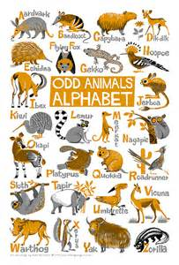 items similar to odd animals alphabet poster limited
